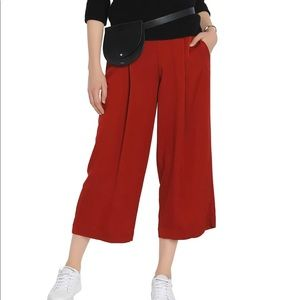 Theory Silk Zavabel pants